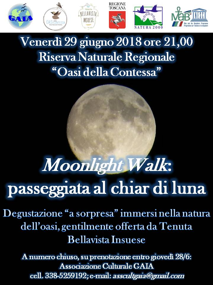 moonlight walk 29giugno2018