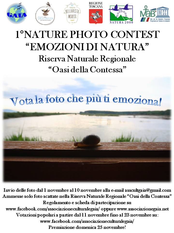 1° nature photocontest