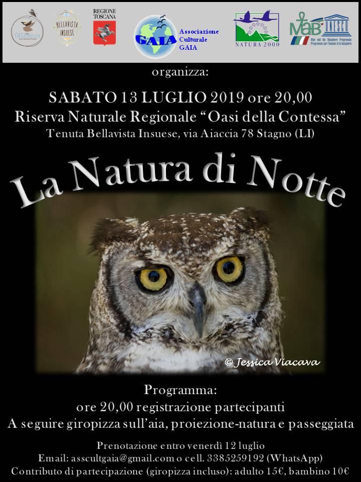 La Natura di notte
